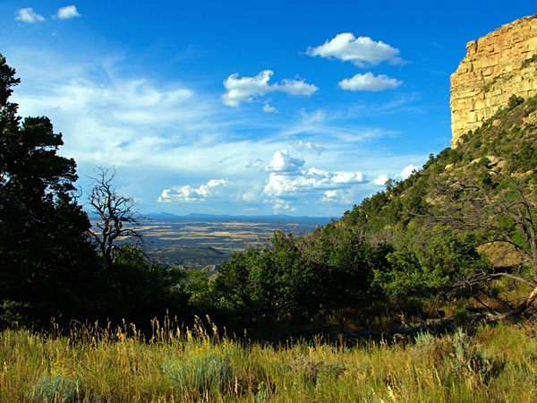 View from Mesa Verde